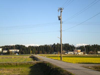 20121116_sanpo