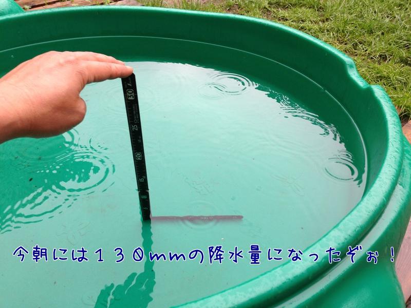 D6m13DfbSDavj0U1371690940_1371691023.jpg