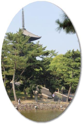 猿沢の池からの五重塔♪