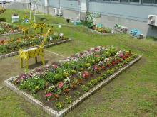 中庭花壇1