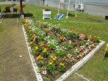中庭花壇3