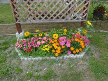 花壇7月2