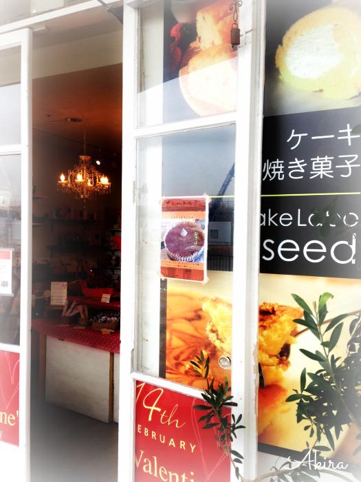 seed入り口
