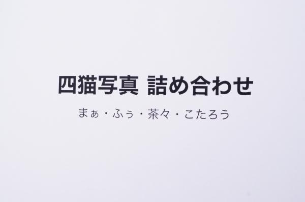 3_20120923014104.jpg