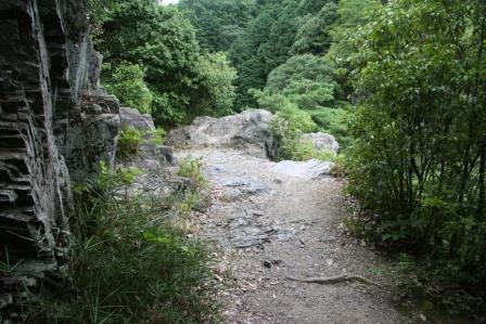 落合の崖上の様子_H24.01.07撮影