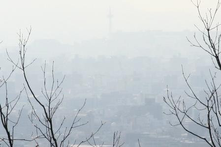 二十八番大日寺から見える京都タワー_H23.03.16撮影