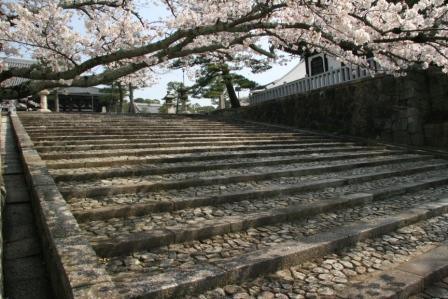 金戒光明寺御影堂前の石段_H24.04.10撮影