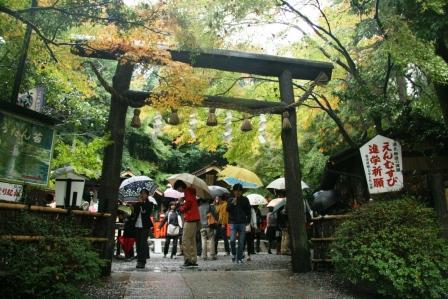 野宮神社黒木の鳥居H24.11.11撮影