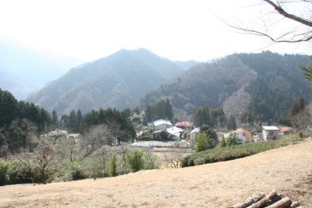 丘の上から_H25.03.09撮影