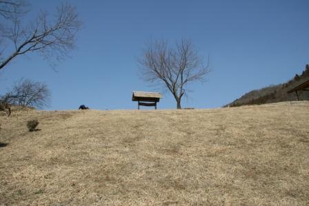 丘の下から_H25.03.09撮影