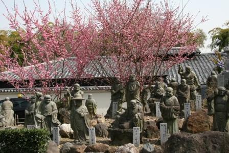 嵐山羅漢の紅梅2_H25.03.16撮影