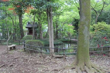 放生池とお堂_H25.04.07撮影