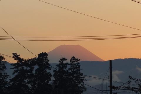 tokyo_unkai_04.jpg