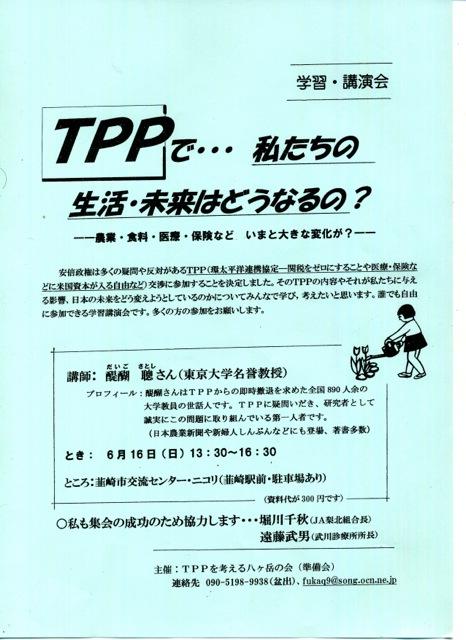 TPP032.jpeg