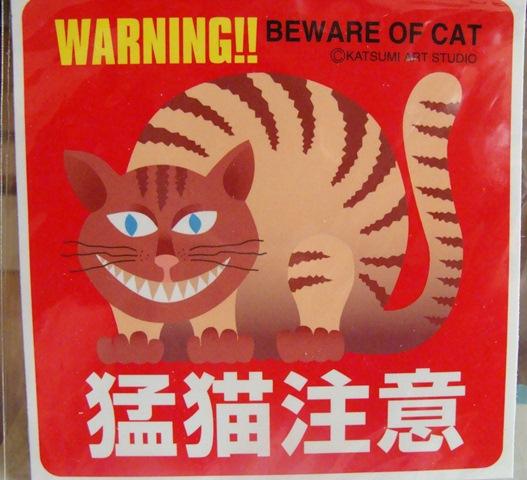 10月24日猛猫注意