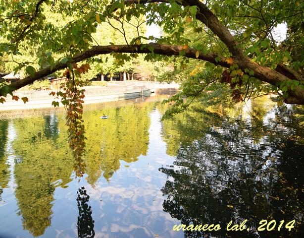 10月28日水鏡2