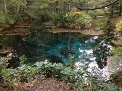 ヒプノセラピー スピリチュアルライフ 神の子池 ポータル