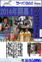 スポーツ新聞・2014年賀状