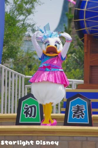 0719-daisy4.jpg