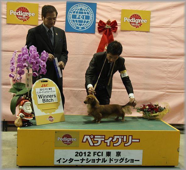 2012.12.23 ルナちゃん2