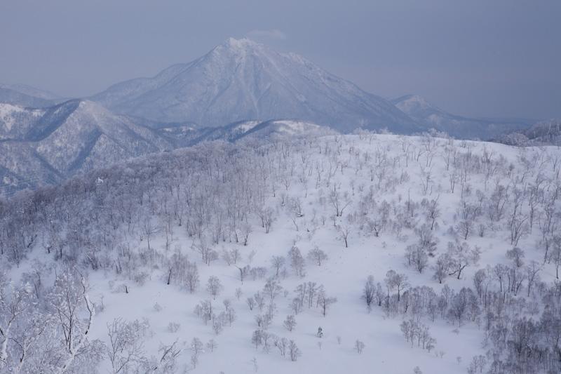 shiraoidake20130126-4636.jpg