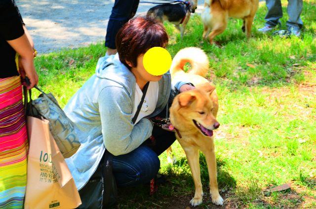 036ann-chan.jpg