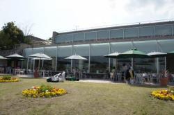 フラワーセンター2