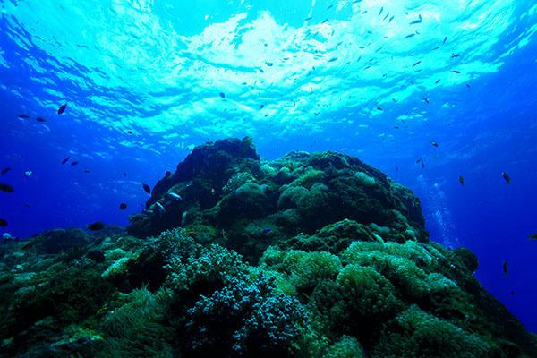 神津島の青