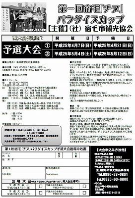 PcapフライヤーA4裏(予選)