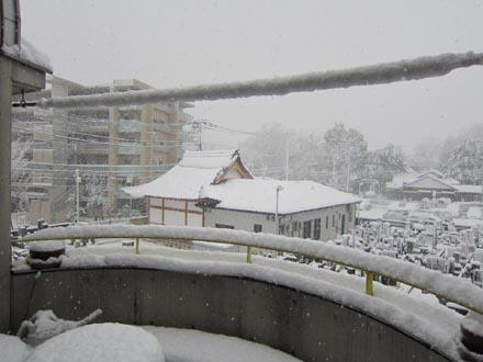 東京の大雪②