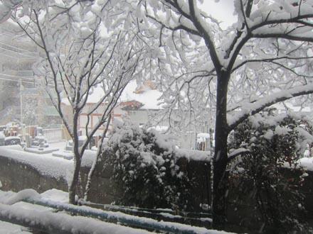 東京の大雪③