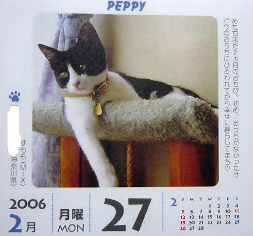 peppy.jpg