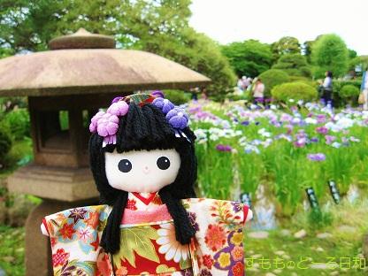 堀切菖蒲園です1
