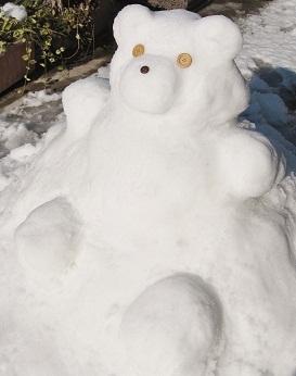 雪クマさん