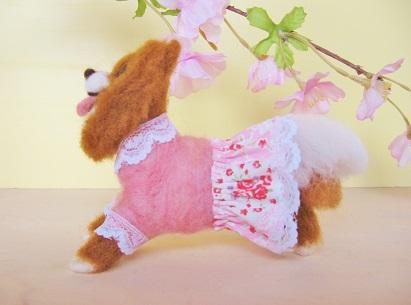 桜ソロモンです