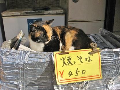 焼きそば猫