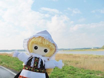 印旛沼です
