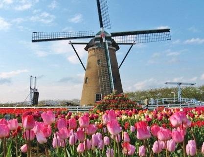 千葉のオランダです