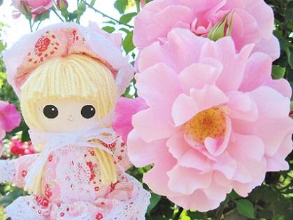 ピンクのバラです