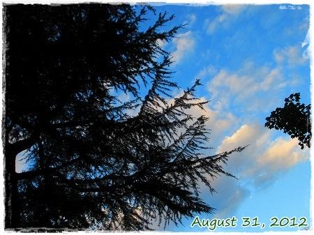 日暮れも最近早くなったね~ この日はすっかり、秋の陽気^^