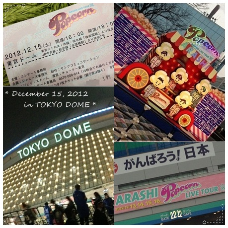 12月15日・東京ドーム嵐コン(2日目)