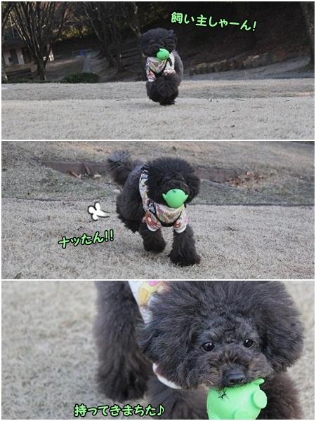ボール遊び大好き^^