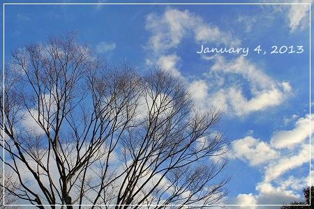 1月4日はお山でラン日和♪