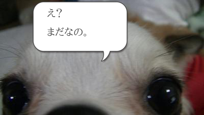 20130521_3.png