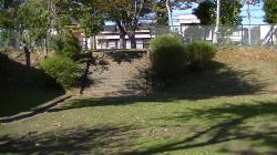 sakura_stairs2.jpg