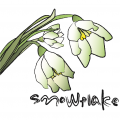 snowflake_jaket