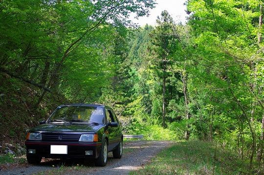 Peugeot 205GTI