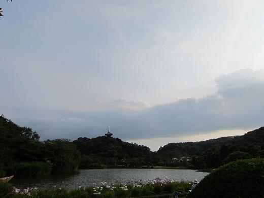 三渓園 13