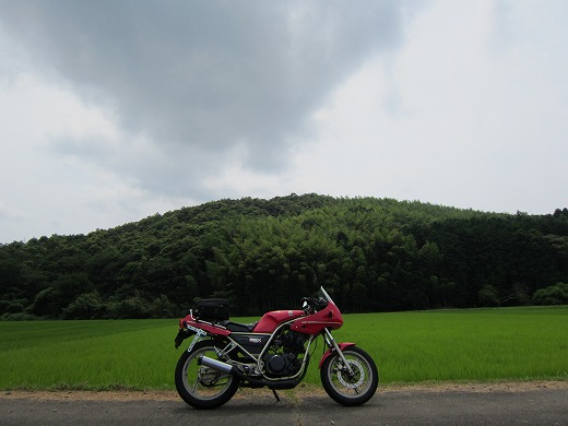 県道80号線 1