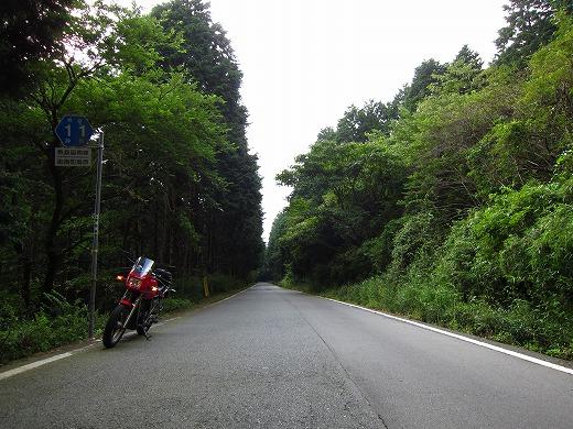 県道11号線 3